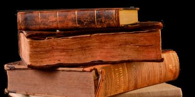 El primer cachorro contra polillas  de libros
