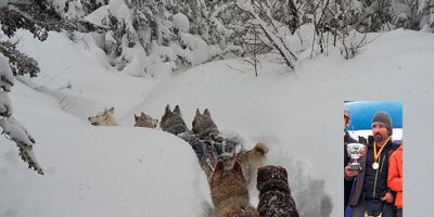 "Joserra Lebrón: ""A los mushers nos consideran deportistas de segunda"""