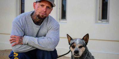 Perros y presos desahuciados se salvan juntos