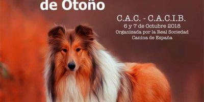 Calendario de pruebas caninas: octubre 2018