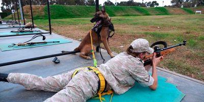 """Las chicas despuntan en las """"olimpiadas caninas de la guerra"""""""
