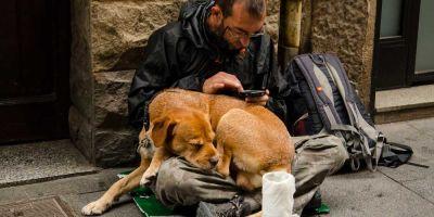 No permitir a un sintecho entrar en un albergue con su mascota puede ser maltrato animal