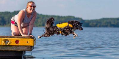 Dock diving, mascotas que vuelan sobre el agua