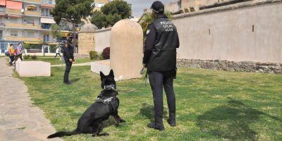 Locky, el perro policía  envidia de La Axarquía