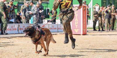 Rusia abruma en sus juegos caninos