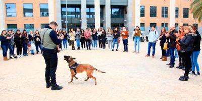 Exhibición para futuros veterinarios