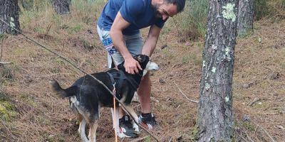 Solidaridad canina con enfermedades genéticas