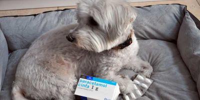 Cuidado con el  Paracetamol