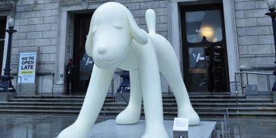 El proyecto de San Francisco para acabar con  el abandono animal, Vision2020,  a punto de cumplirse
