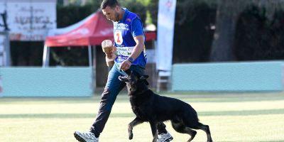 """""""El buen adiestramiento hace al perro más seguro, capaz, fuerte y feliz"""""""